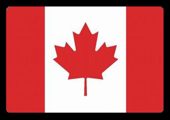 护照原件 至少有1页空白页,此证件有效期至少要持续到申请人计划从加拿大离境后的一个月,最后页必须留有本人签名 白底彩色近照4张照片规格35mmX45mm 个人名片2张 户口簿复印件与翻译件 加拿大签证申请表(我司负责完成) 完整填写的申请表,并由签证申请人本人签名 财力证明 个人需提供房产证原件复印件,以及5万元以上银行存款证明原件复印件 暂住证或居住证原件,复印件 户籍所在地和工作单位所处城市不一致时需要提供居住证或暂住证,居住证或暂住证必须是申请签证日半年前申请所得,即:为了申请签证而当