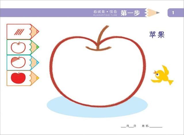 幼儿园 托小班专用 美术教材 书写前期专业 画线条涂色(上)