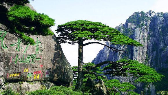 上海,苏州,杭州+黄山,千岛湖,西塘乌镇纯玩2飞6日游