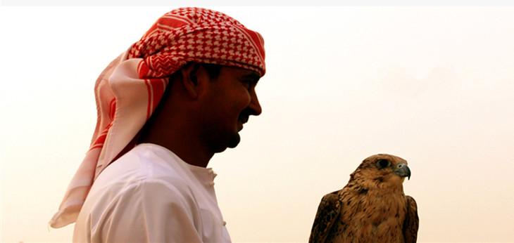 试骑骆驼 -海娜手绘(阿拉伯手绘) -阿拉伯水烟 -提供包括开胃餐在内