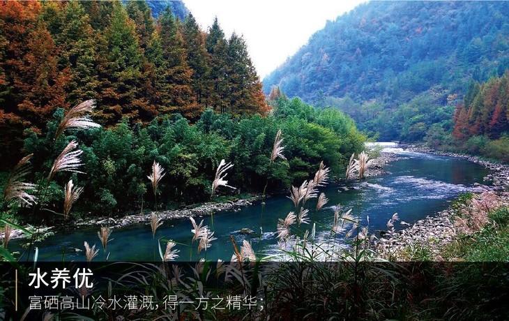 安徽珍硒山庄风景