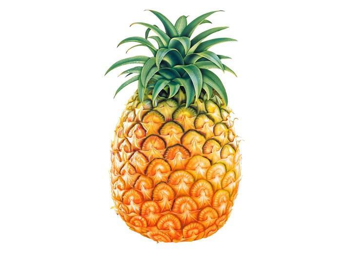 有缺口的菠萝的简笔画