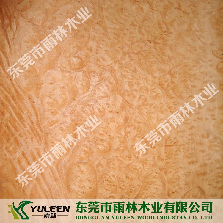 麦当娜树瘤木皮