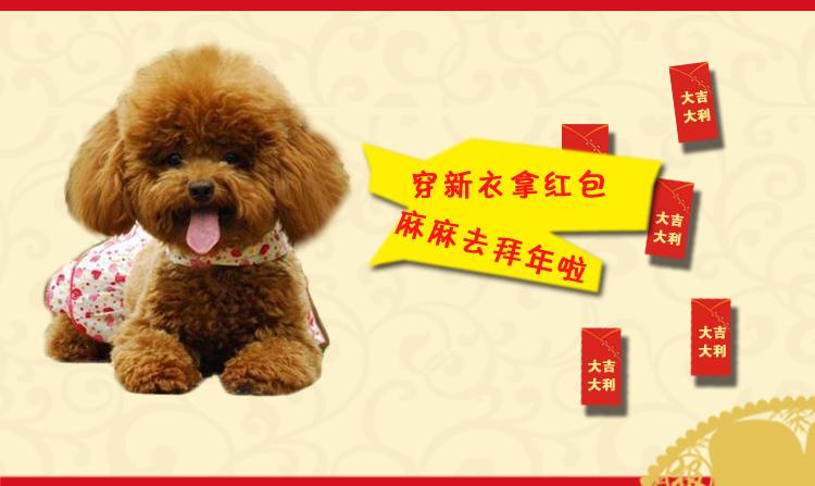 第四色播播动物与人_宠爱有佳 cayj512 四色新年唐装